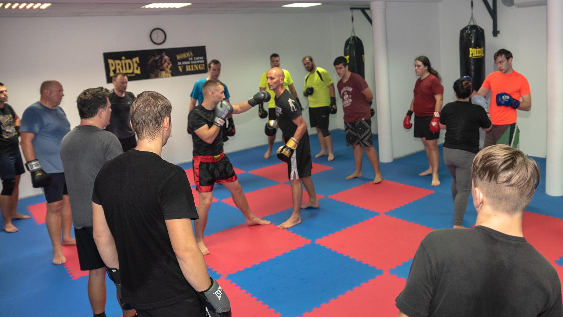 Fight Club Shony Boks
